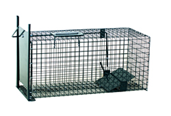 ANIMAL CAGE FOR AN ENTRY