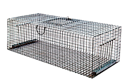 CAGE FOR PIGEONS